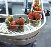 Les solutions Rexroth pour l'agro-alimentaire